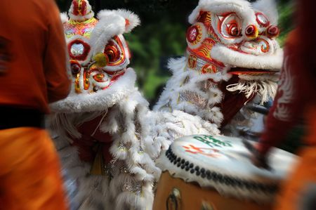 lion dance: lion dance Stock Photo