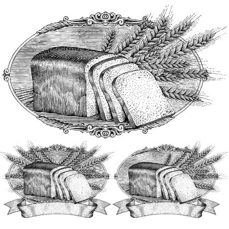 loaf: drawn by hand with a woodcut or engraving look, bread and wheat in an ornate frame with scroll ready for your label design.