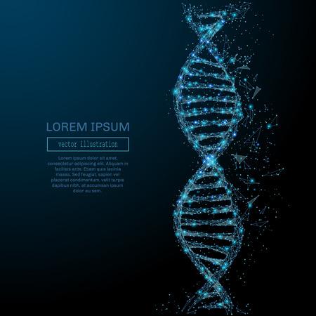 다각형 DNA 개념입니다. 파편 비행에서 벡터 메쉬 분야입니다. 얇은 라인 개념. 파란색 구조 스타일 그림 일러스트