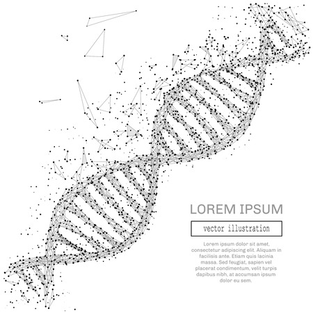 Grey DNA with polygon line on black abstract background. Polygonal space low poly with connecting dots and lines. Connection structure. Vector science background. Illustration