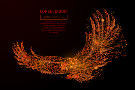 Abstract mash line and point eagle in flames style on dark background with an inscription. Starry sky or space, consisting of stars and the universe. Vector illustration