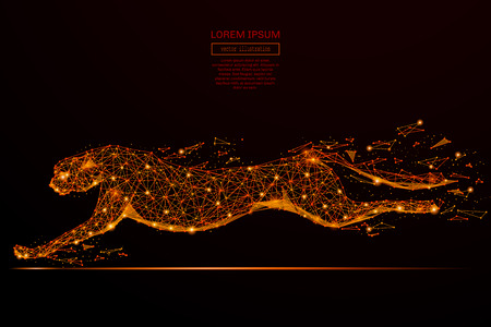 Abstract mash line and point cheetah in flames style on dark background with an inscription. Business net speed of a starry sky or space, consisting of stars and the universe. Vector illustration