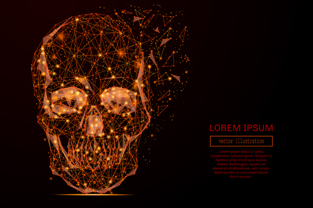 Abstract mash line and point skull in flames style on dark background with an inscription. Vector concept of data protection. Starry sky or space, consisting of stars and the universe. Illustration