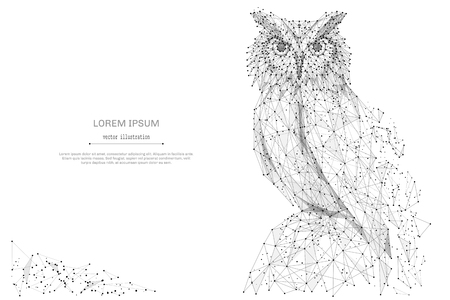 owl illustration: Owl isolated from low poly wireframe on white background. Wild bird of prey. Vector abstract polygonal image mash line and point hands collect puzzle with an inscription. Digital graphics Illustration