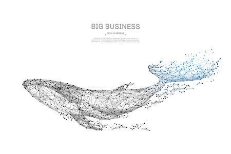 Blauwe vinvis lage poly wireframe geïsoleerde zwarte op witte achtergrond. Abstracte stamlijn en puntorigami. Vector illustratie. groot zeedier met geometrische driehoek. Lichte verbindingsstructuur.