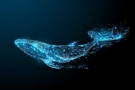 Baleia azul composta de polígono. Conceito digital de animais marinhos. Baixa ilustração vetorial poli de um céu estrelado ou Comos. Ilustración de vector