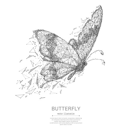 Butterfly low poly wireframe isolated black on white background. Abstract mash line and point origami. Vector polygon illustration. Insect with geometry triangle. Light connection digital structure.