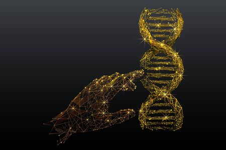 Genetic analysis and research low poly wireframe illustration. Polygonal DNA chromosome analyzing mesh art. Gold metal 3D scientist hand touching double helix molecule model. Molecular biology science Illusztráció