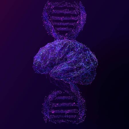 Brain and DNA spiral low poly wireframe