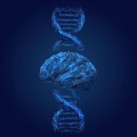 Ilustración de estructura metálica de baja poli en espiral de cerebro y ADN. Conexiones de células de neuronas poligonales arte de malla. Molécula de doble hélice 3D con puntos conectados. Análisis genético, investigación bioquímica y médica. Ilustración de vector