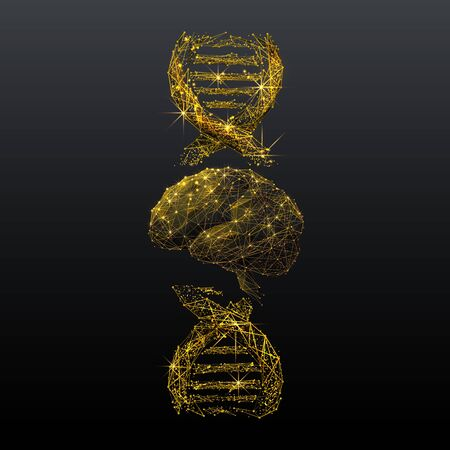 Brain and DNA spiral low poly wireframe illustration. Gold polygonal neurons cells connections mesh art 3D double helix molecule with connected dots. Genetic analysis, biochemical and medical research