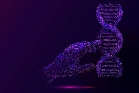 Genetic analysis and research low poly wireframe illustration. Polygonal DNA chromosome analyzing mesh art. 3D scientist hand touching double helix molecule model. Molecular biology science in purple Illusztráció