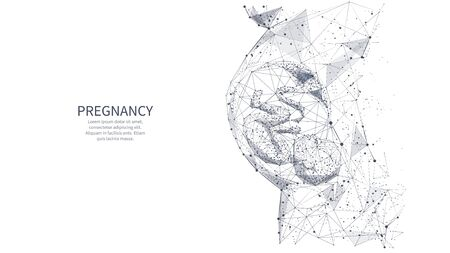 Closeup of an abstract pregnant woman with embryo in her maw side view. Isolated pregnancy medical concept on white. Vector low poly wire frame illustrations with connected dots, and triangle shapes. Archivio Fotografico - 133468799