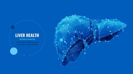 Liver health low poly wireframe banner vector template Ilustracja
