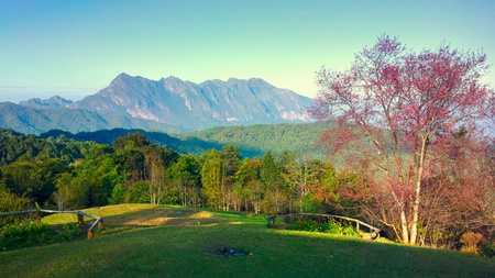 doi: Doi luang chiang dao mountain at chiangmai thailand