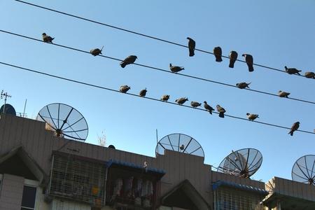 antena parabolica: La antena parab�lica y l�nea el�ctrica en la calle Foto de archivo