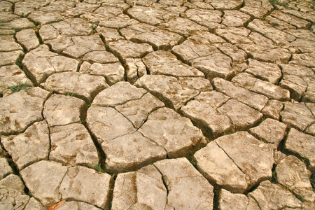 cracked: The Land with dry and cracked ground Stock Photo