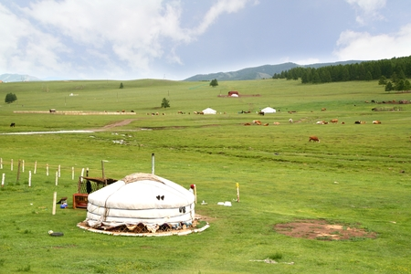 The ger camp in a large meadow at Ulaanbaatar , Mongolia