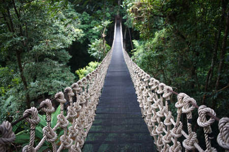 Wooden suspension bridge in the forest