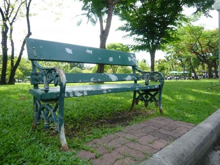 Bench in the Garden photo