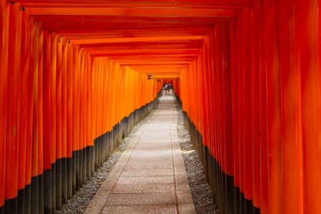 Background orange torii  photo