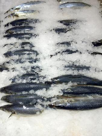 fisch eis: Fisch Eis Markt