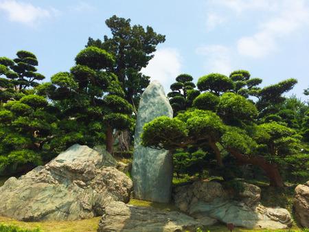 Zen-tuin park