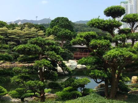 meditaion: zen garden park