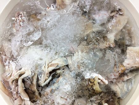 commercial fisheries: fish ice market