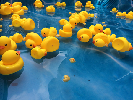 yellow duck plastic
