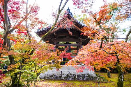 The Wood Pavilion in Autumn Garden