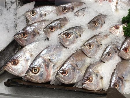 Fish Market, Supermarket Fresh Stok Fotoğraf