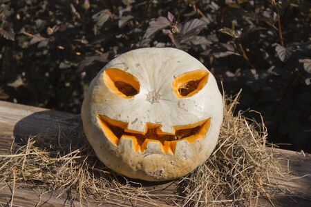 Jack O Lantern with carved face sitting on a bed of straw.