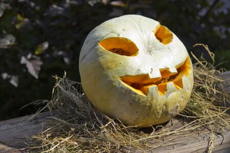 Jack O Lantern with carved face sitting on a bed of straw. Imagens - 130895673