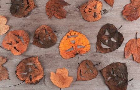 dry foliage on a wooden background. on the leaves made a scary mask. creative holiday of Halloween.