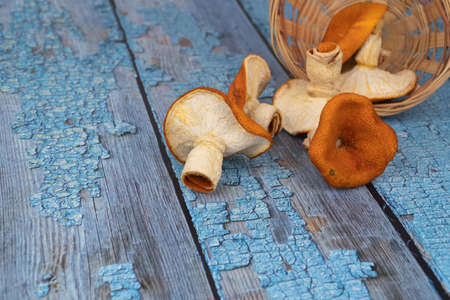 orange mushrooms on a wooden background. selective, blurred focus. tangerine mushrooms, creative product. wooden boards with scuffed blue paint