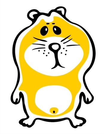 amusant: Le hamster dor� stylis� amusant sur un fond blanc.