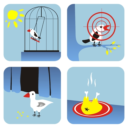 All kinds of birds - in a cell, on a branch, in an agriculture, on a frying pan. Stock Vector - 1975653