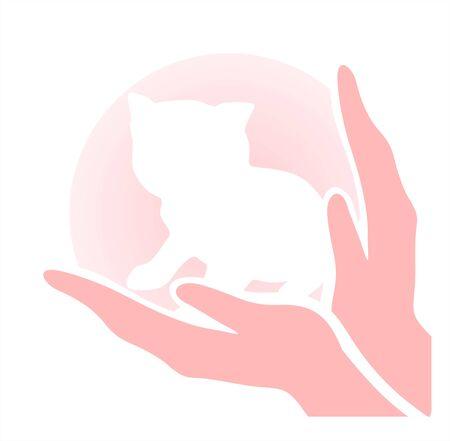 caring hands: Kitten in zorgzame handen. Een symbool van de bescherming van kinderen en dieren.
