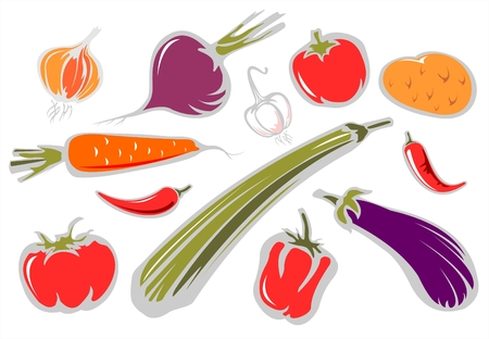 The stylized tomatoes, pepper, eggplant, onion, garlic, potatoes and zucchini on a white background.
