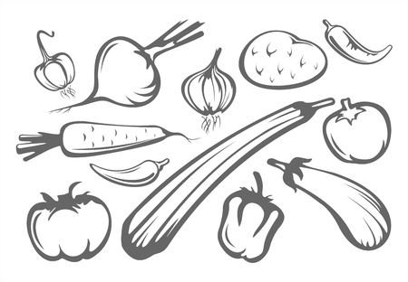 The stylized tomatoes, pepper, eggplant, onion, garlic, potatoes and zucchini isolated on a white background. Illustration