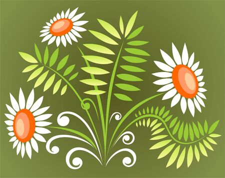 Three ornate white flowers isolated on a green  background. Vector