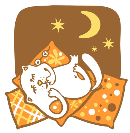 The amusing white cat sleeps on pillows on a background of the night sky. Vector