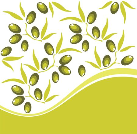 olive leaves: Stylized fruits and olive leaves on a white background. Illustration