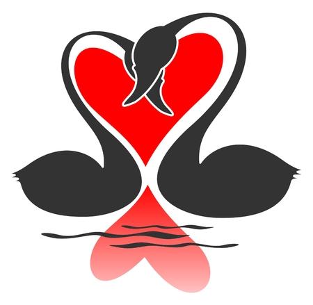 Two black  swans on a white background. Valentines illustration. Illustration
