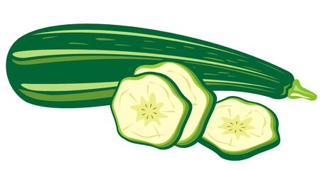 zucchini: Stylized zucchini and slices isolated on a white background. Illustration