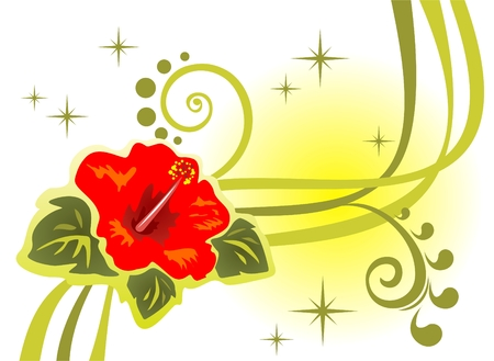 red hibiscus flower: Abstract  pattern with flower and strips on a white background. Illustration