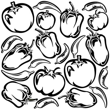 poivre noir: Dessin anim� de tomates, poivrons et paprika silhouettes sur un fond blanc.