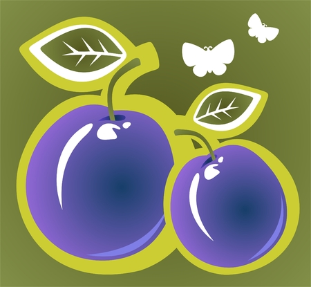 Two stylized cartoon plums on a green background. Vector