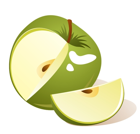 Stylized green apple with slice isolated on a white background. Stock Vector - 5101682